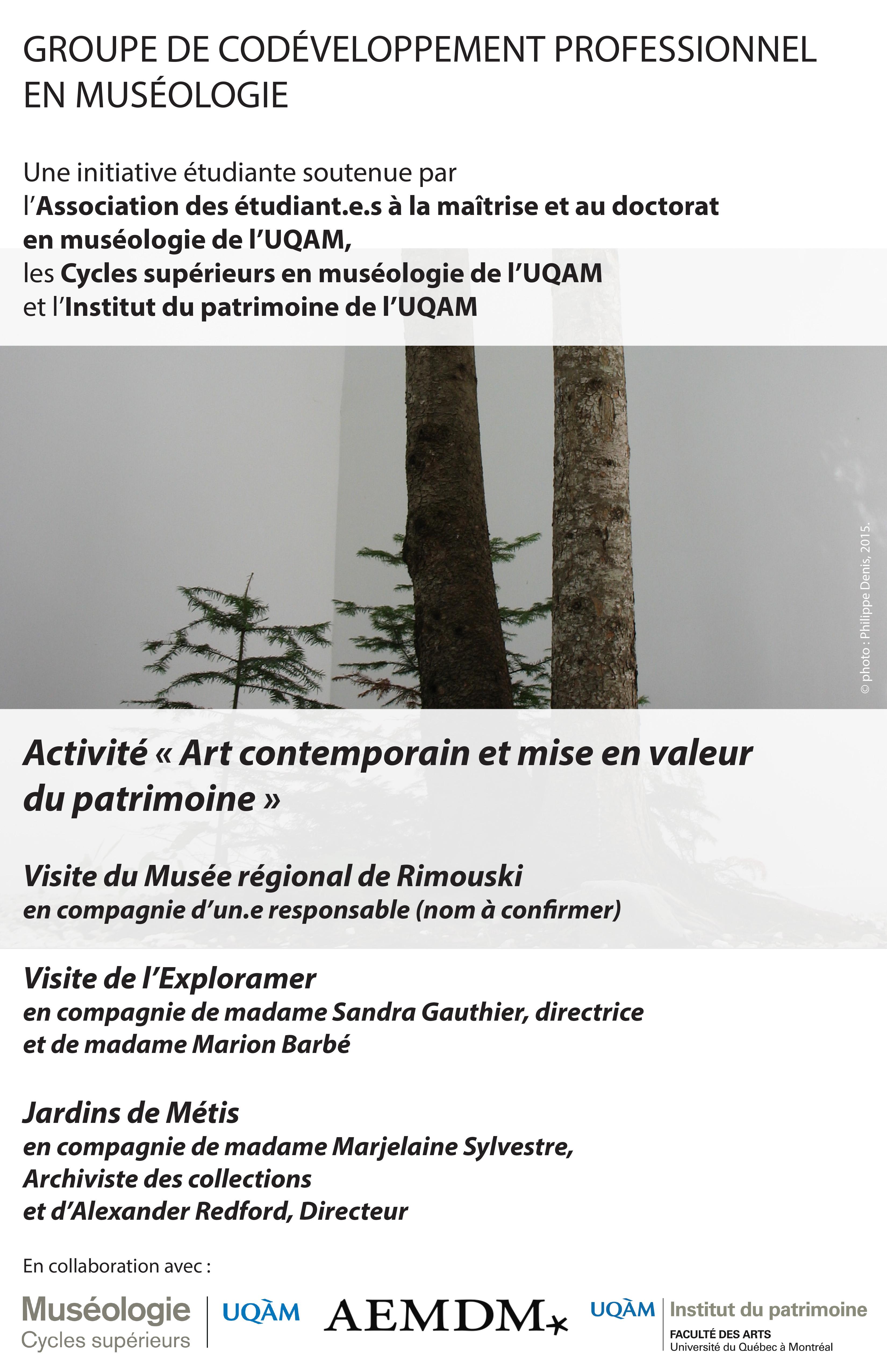 Groupe de codéveloppement professionnel en muséologie / Art contemporain et mise en valeur du patrimoine