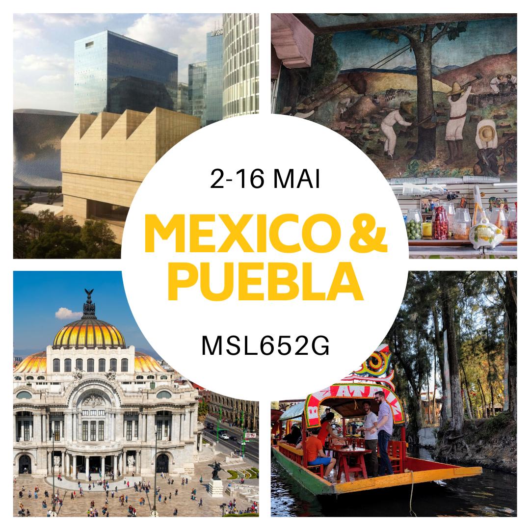 Mexico et Puebla 2020 – MSL652G Muséologie, médiation, patrimoine en Amérique Latine